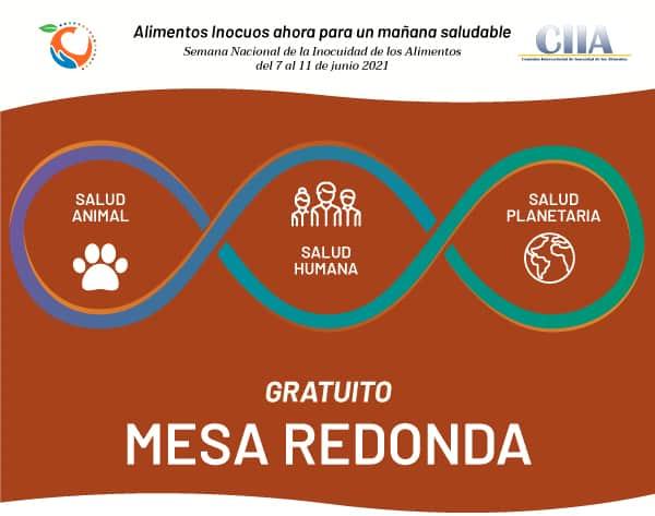 mesa-redonda-unasalud
